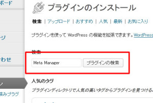 wordpress_metamanager1