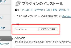 wordpress_metamanager1